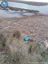 Marine litter in the Evros Delta