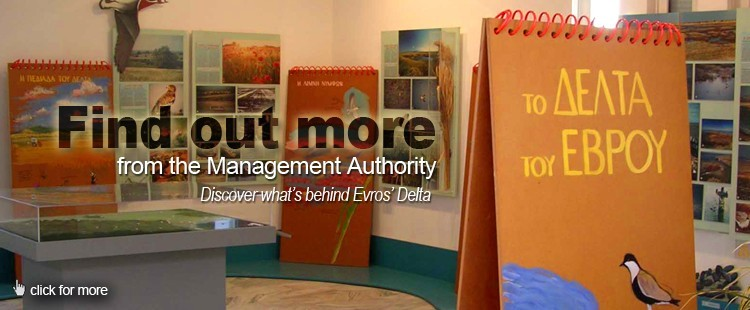 Management authority: Find out what' s behind Evros Delta.