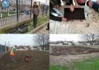 Πρόγραμμα Σχολικών Κήπων στο 2ο Δημοτικό Σχολείο Φερών